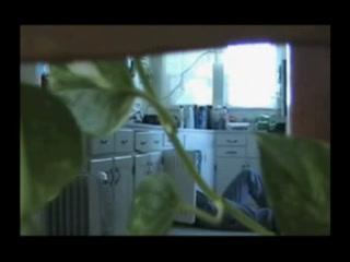 Домохозяйки скрытая камера порно онлайн