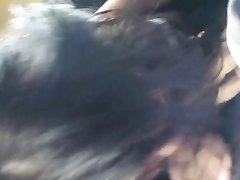 Толстушка сосет негру