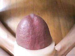 Домашняя мастурбация члена в видео крупным планом сделана профессионалкой