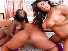 Групповой домашний секс фигуристых темнокожих лесбиянок и негра с чёрным членом