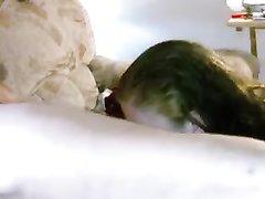 Зрелая толстуха чеканит домашний минет возле скрытой камеры стоя на коленях