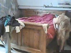 Домовладелец подглядывает за квартиранткой, которая раздевается до нижнего белья, а потом снимает трусики