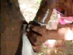 Негритянка с огромной попой на природе бесплатно отсосала чёрный член в резинке