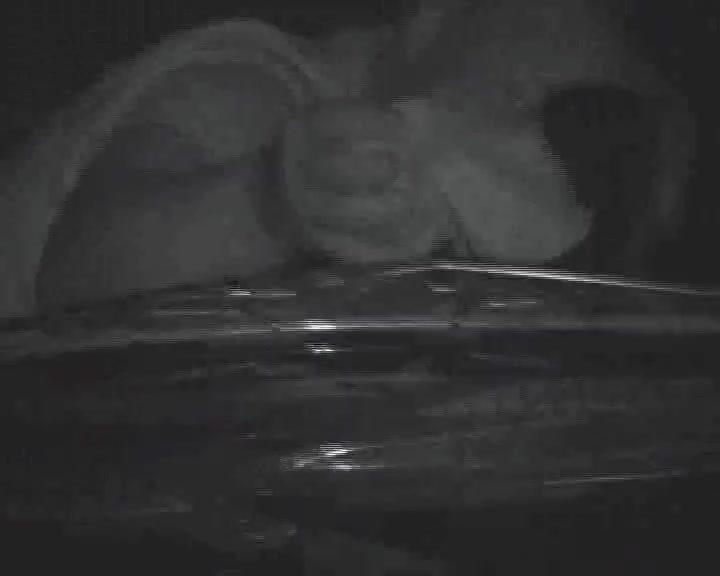 Скрытая камера снимает видео с минетом от молодой шлюхи в вечернее время